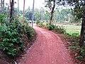 Taliparamba Muyyam 2.jpg