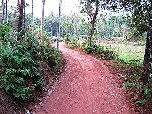Karimbam, Taliparamba - Muyyam footpath