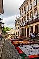 Tapetes Devocionais da Semana Santa Ouro Preto--.jpg