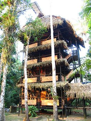 Cuyabeno Wildlife Reserve - Tapir Lodge, an example of eco- hotel in the Cuyabeno Wildlife Reserve.
