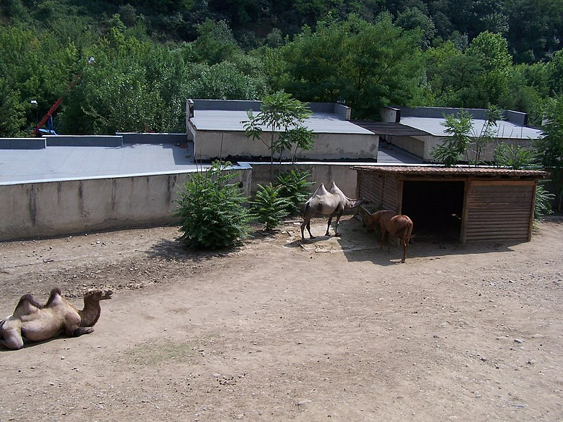 http://upload.wikimedia.org/wikipedia/commons/thumb/2/2f/Tbilisi_Zoo.jpg/800px-Tbilisi_Zoo.jpg