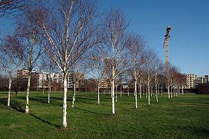 Thames barrier park 02.02.2012 15-37-46.JPG