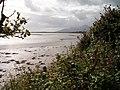 The Blackstaff River meandering between mud flats in the Inner Bay - geograph.org.uk - 2190714.jpg