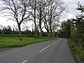 The Blackwatertown Road - geograph.org.uk - 600512.jpg