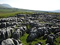 The limestone pavement at Runscar Scar - geograph.org.uk - 1302970.jpg