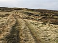 The track to Killhope Law - geograph.org.uk - 604885.jpg