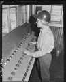 This girl, by means of push buttons, controls loading of coal into cars. Cars are moved, conveyors, and shutes are... - NARA - 540582.tif