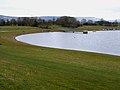 Thornton Reservoir - geograph.org.uk - 139376.jpg