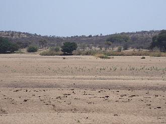 Thuli Parks and Wildlife Land - Looking across the Shashe River into Thuli Safari Area, Zimbabwe