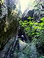 Tiesňava nad Hlbockým vodopádom 2 - panoramio.jpg