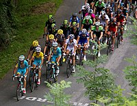 Tour de France 2014, groep gele trui (14867262214).jpg