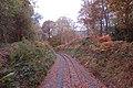 Track in the autumn near Golfa - geograph.org.uk - 1560310.jpg