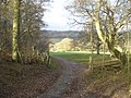 Track to Hillend Farm - geograph.org.uk - 627979.jpg