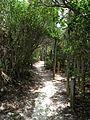 Trail - panoramio (13).jpg