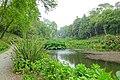 Trebah Garden - Cornwall, England - DSC01571.jpg