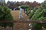 Trees for Troops, The SPIRIT of giving 161205-F-GX122-053.jpg