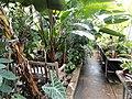 Tropic House - Wellesley College - DSC09749.JPG