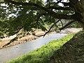 Tsuwanogawa River from Yasaka Shrine.jpg