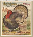 Turkey brand molasses. Bryan Bro's. New Orleans LCCN2003667058.jpg