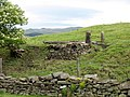 Two Posts - geograph.org.uk - 863315.jpg