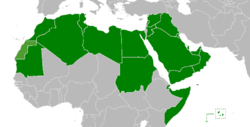 Image result for arabian union