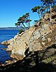 USA-Point Lobos State Reserve-Bluefish Cove-3.jpg
