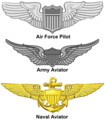 US - Aviation Wings.png