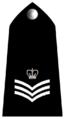 Uk-police-02b.png