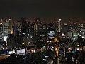 Umeda Sky Building Rooftop View.jpg