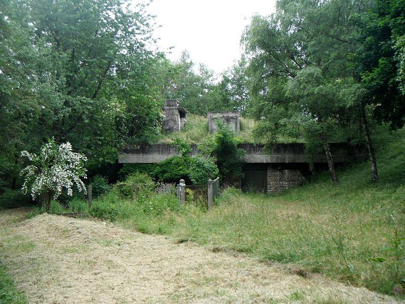 Unité d'habitation de Firminy-Vert (architecte: Le Corbusier) (jardin)