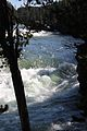 Upper Falls Yellowstone River 05.JPG