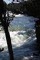 Upper Falls Yellowstone River 05.JPG