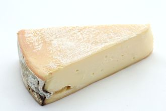 Types of cheese - Vacherin du Haut-Doubs cheese, a French cheese with a white Penicillium mold rind