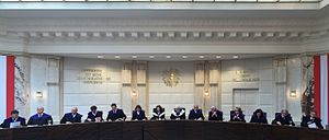 Austrian presidential election, 2016 - Constitutional Court hearings on the FPÖ's election challenge (20–23 June)