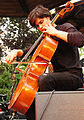 Vienna 2013-07-31 Stadtpark 380 Alp Bora Quartet - Lukas Lauermann.jpg