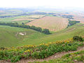 View from Swanborough Hill - geograph.org.uk - 51641.jpg