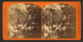 View near Eureka, from Robert N. Dennis collection of stereoscopic views.png