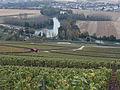 Vignes (vue sur la Marne depuis Hautvillers.51) Cl.J.Weber03 (23569108752).jpg