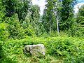 Villers-Saint-Frambourg (60), dolmen 'Le Cheval Blanc' (parcelle 102, près du chemin du Cheval Blanc).jpg