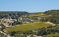 Vineyards, Minerve cf02.jpg