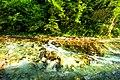 Vintgar Gorge (35423448220).jpg