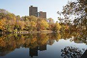 Vladimirskiy Pond (Moscow).jpg