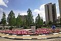 Volunteer Square in Beer Sheva 1.jpg