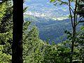 Vue sur Masevaux à partir du chemin du Satelboden - panoramio.jpg