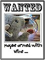 Wanted armed with wine.JPG