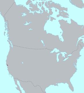 Wappo language extinct language spoken by the Wappo people