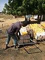 Water Vendor.jpg