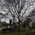 West Norwood Cemetery – 20180220 102605 (40378522071).jpg