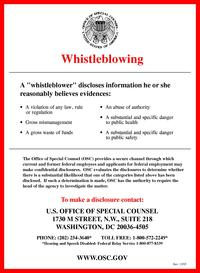 Whistleblowing.pdf