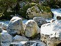 WikiProjekt Landstreicher 4.0 Berchtesgaden Zauberwald.jpg